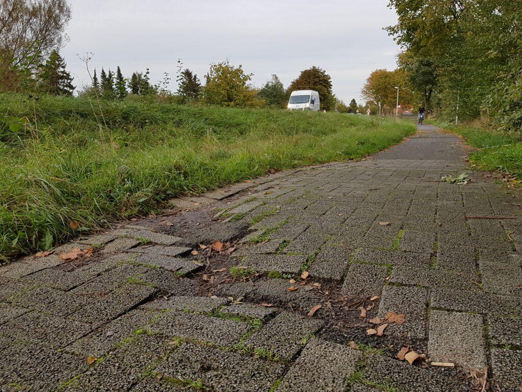 Die L 107 in Tornesch: Wurzelaufbrüche, Schlaglöcher, überwucherndes Gras und die Mindestbreite wird auch um fast einen Meter unterschritten. Bisher war der Kreis der Auffassung, dass dies den Radfahrern zuzumuten sei.